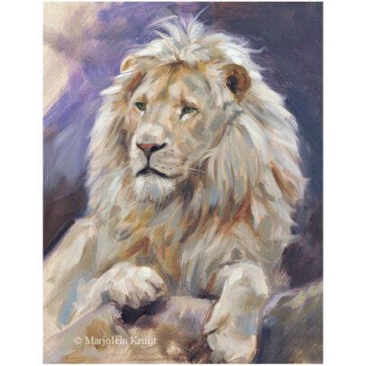 'Witte leeuw', 18x24 cm, olieverf schilderij, (te koop)